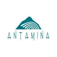 COMPAÑIA MINERA ANTAMINA S.A.